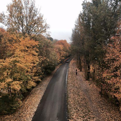 autumn-robi-agnes-knitwear
